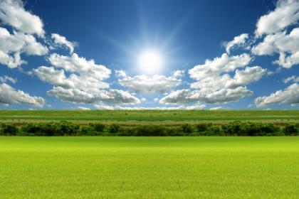 sunny day'